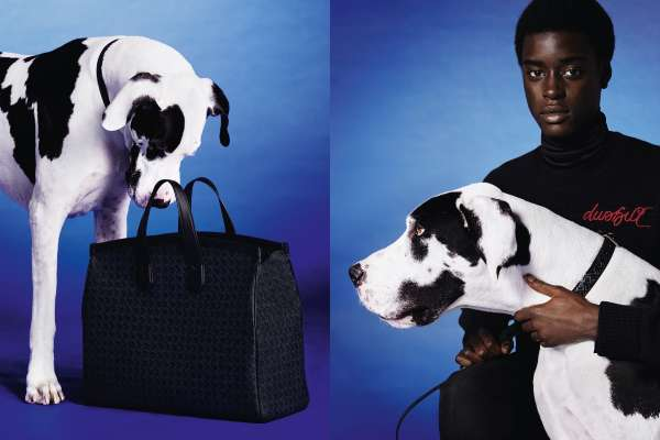 Charm and fashion in the new Dunhill collection