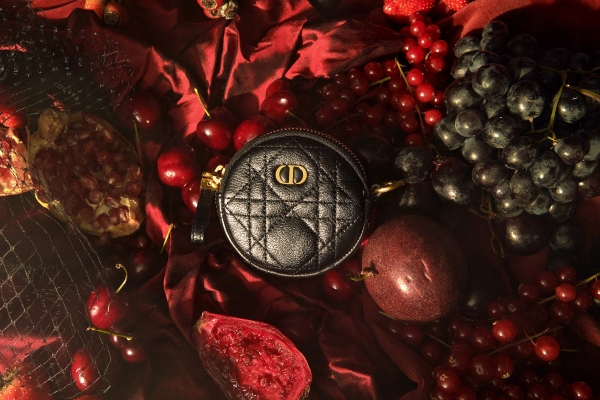 Dior thrills us with their new collection